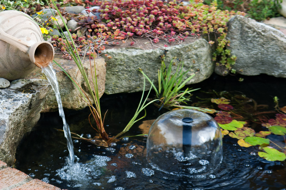 Garden Water Features And Fish Basic Tips You Should Know About
